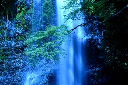 必勝ダルマの勝尾寺と迫力ある箕面大滝(大阪)