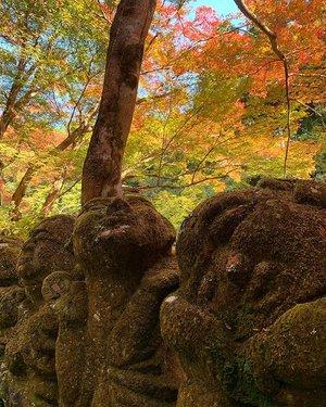 1200体の可愛い羅漢さんが出迎えてくれる愛宕念仏寺(京都)